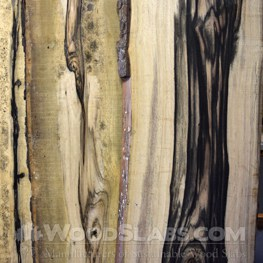persimmon wood slab