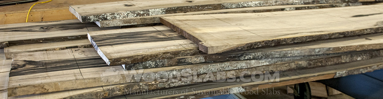 Persimmon wood slabs