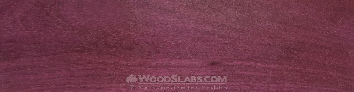 purpleheartr wood slabs